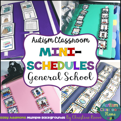 Mini schedules are great for helping students gain independence at smaller tasks throughout the day.