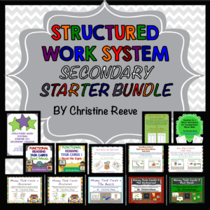 Secondary Structured Work System Bundle for Life Skills --STarter Kit and Tasks