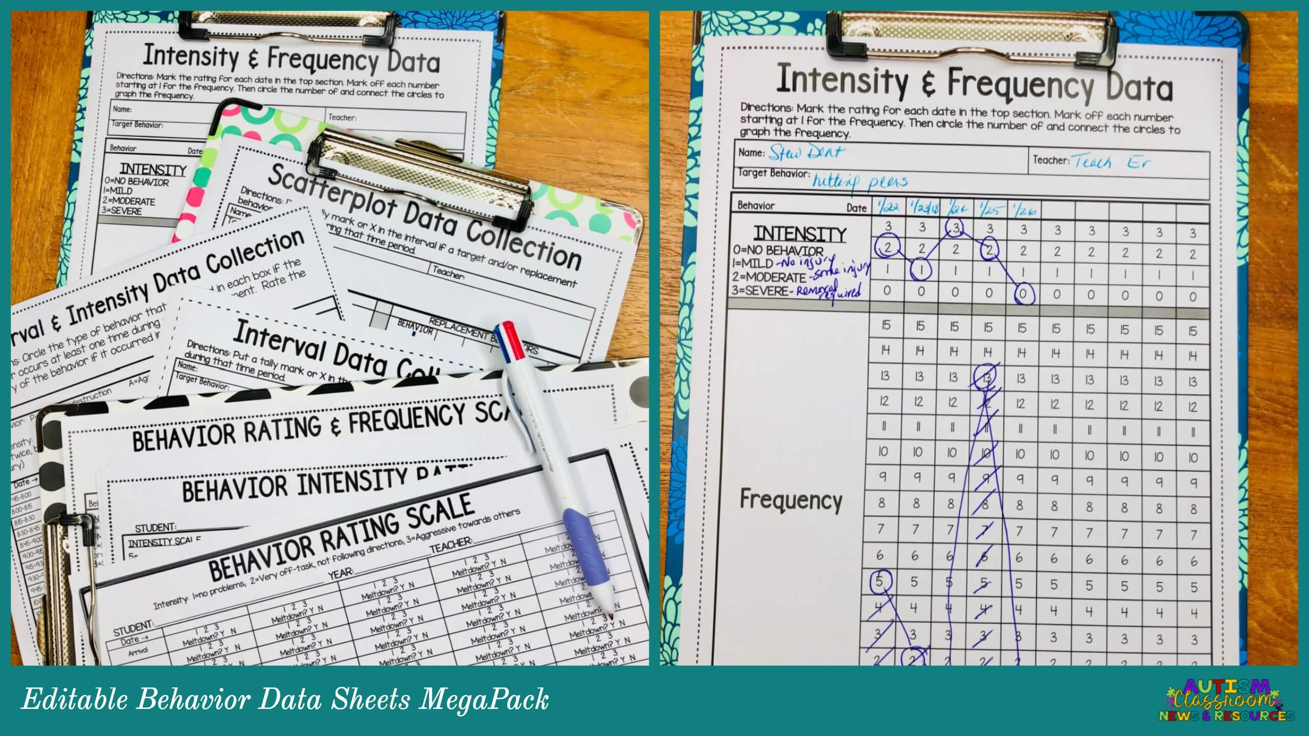 Editable behavior data sheets for frequency, intensity, and interval data
