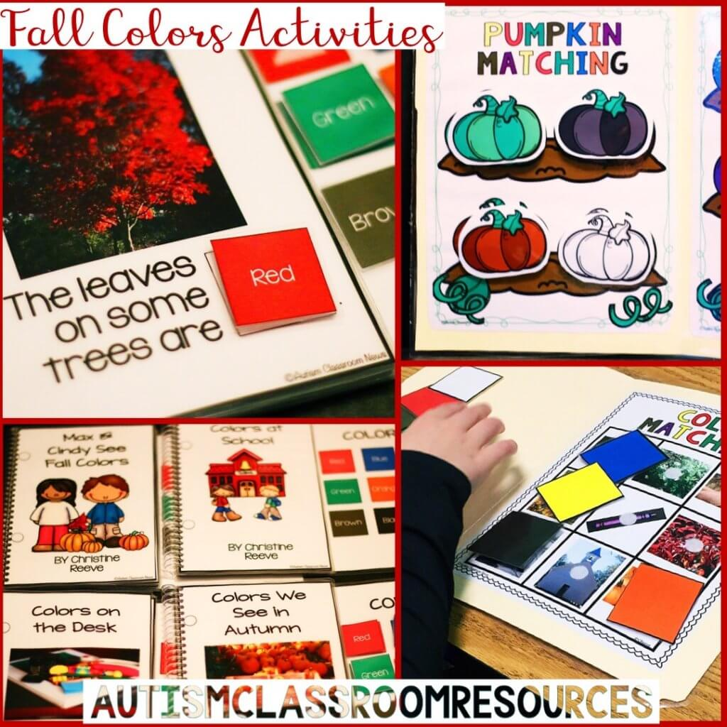 fall color activities
