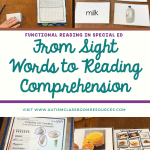 Functional Reading: From Sight Words to Reading Comprehension