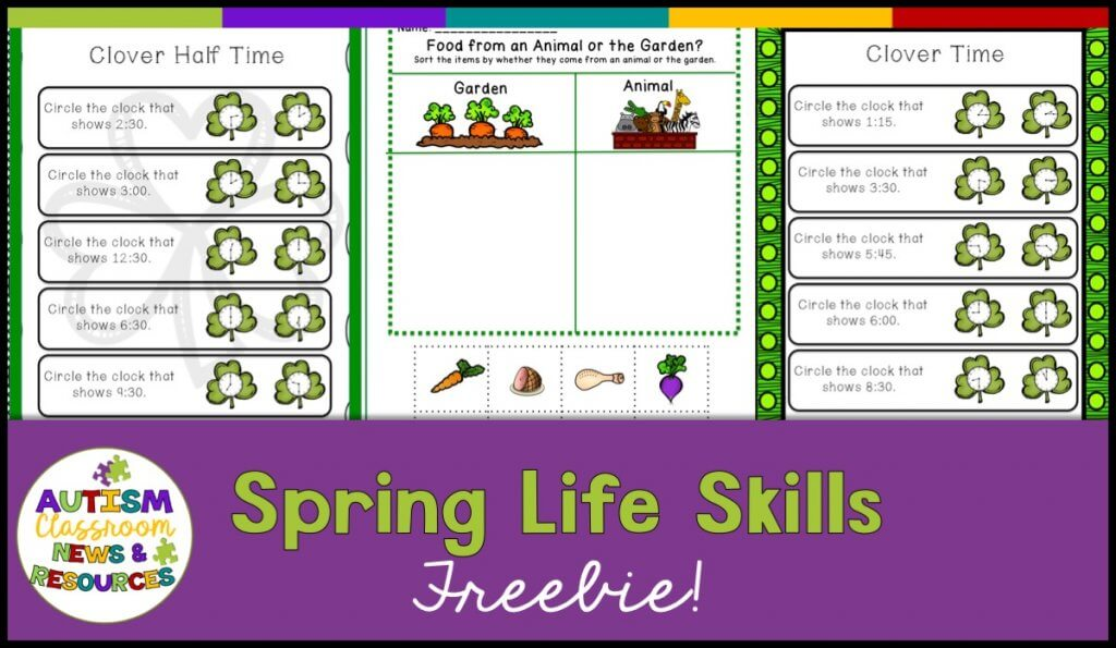 Spring Life Skills Activities in 3 Spring Special Education Resources to Engage Students