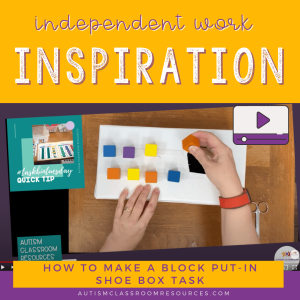 Independent Work Inspiration: To Make a Block Put-In Shoebox Task
