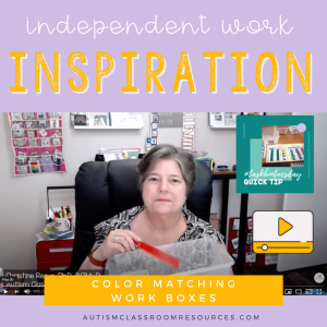 Independent Work Inspiration Color Matching Work Task