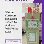3 More Common Behavioral Issues to Address With Visual Cues